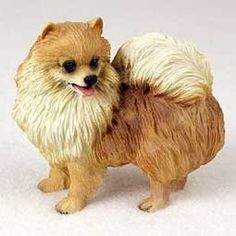 Pomeranian - Figurine - Gift for Dog Lovers by Conversation Concepts, http://www.amazon.com/dp/B000OBIU48/ref=cm_sw_r_pi_dp_EsKrrb0212XSA