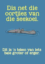 Image result for Afrikaanse idiome - know 2 ppl that speak Afrikaanse & I never understand what they are saying :)