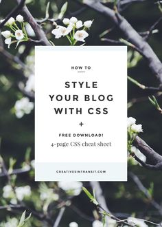 Learn how to customize the design your blog or WordPress theme using CSS - it's easy!