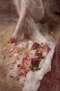 Woman's legs & flower petals on floor art