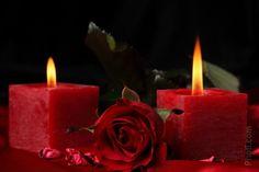 Vela objeto, vermelho, flores, rosa