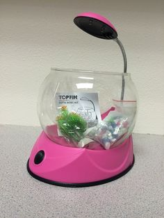 RECALLED! Don't get Betta Bowl Kit for your kids.  The glass bowl can crack, shatter or break during normal handling, posing a laceration hazard.