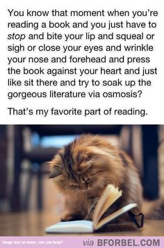 Literature Via Osmosis…