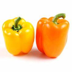 Esta variedad es de la clase de pimientos rectangulares, los más consumidos. Son apreciados por su carne gruesa y su gran tamaño y sólo varía su color.