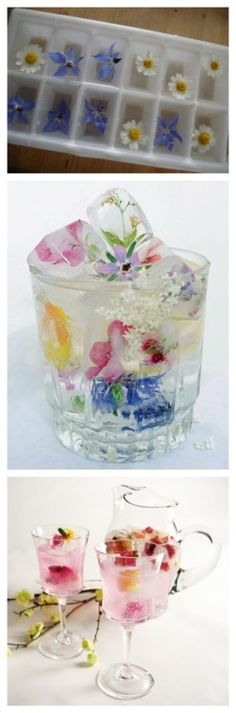 fresh flowers in ice cubes