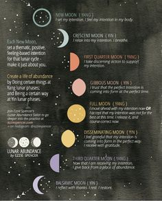 """""""Wonderful chart for the moon cycles by @ezziespencer  Use this to guide your intentions and the seeds you plant """""""