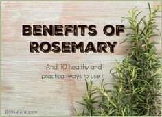 Benefits of Rosemary and 10 Healthy Ways to Use It