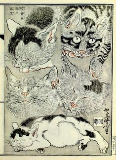 Kawanabe Kyōsai (Japan, 1831-1889) - Sketch of cats from a woodblock print book, 1887 - Los Angeles County Museum of Art