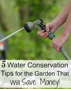 Are you looking for water conservation tips for your garden? Learn tips on how to conserve water while gardening and other tips to make your water last longer! Gardening For Beginners, Gardening Tips, Water Saving Tips, Small Space Gardening, Water Dispenser, Raised Garden Beds, Raised Bed, Water Conservation, Front Yard Landscaping