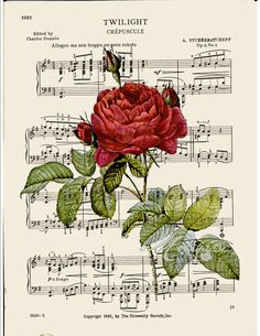 Items similar to French Red rose print on music COUPON SALE Dictionary art print Wall decor Digital print Sheet music print Home decor Item No. 397 on Etsy Sheet Music Art, Music Paper, Paper Art, Music Sheets, Vintage Diy, Vintage Cards, Vintage Paper, Vintage Postcards, Book Page Art