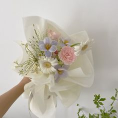 🕊✨ Luxury Flowers, My Flower, Flower Power, Beautiful Flowers, Plants Are Friends, No Rain, Flower Aesthetic, Planting Flowers, Boquette Flowers