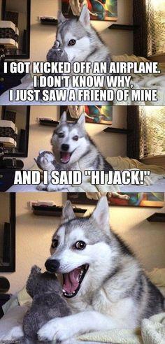 Pun dog. Hijack!
