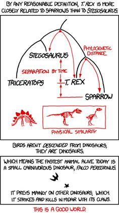 Sure, T. rex is closer in height to Stegosaurus than a sparrow. But that doesnt tell you much; Dinosaur Comics author Ryan North is closer in height to certain dinosaurs than to the average human.