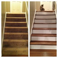 Stair tread redo. Ripped up the carpet, replaced treads & bead board on risers