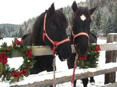 Pair of Christmas horses