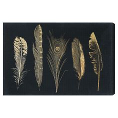 Corinthian Feathers Canvas Print, Oliver Gal
