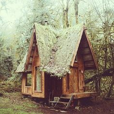 Now this is what I'm talking about!! @folkmagazine has me swooning!! #nestinginnature #sheshed #inspiration #natureretreat #naturelover #theartofslowliving #tranquility #peaceandquiet #escape #wanderlust #liveauthentic #wildandfree #adventurer #traveler #greenspace #bohodreams #folkmagazine #wilderness #rustic #dreamy #relax #woodland #bigwoods #tinyhouse #wow by nestinginnature