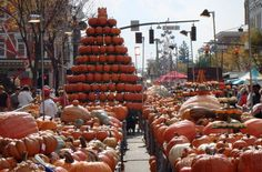 Go to the Circlevill Pumpkin Show in Ohio