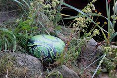 фото-дневник: Расписанные камни и не только...
