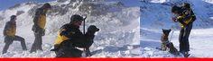 Alpine Rettung Schweiz: Portrait