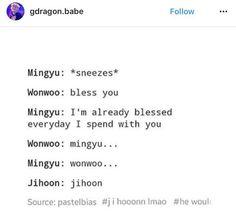 mingyu | wonwoo | woozi | seventeen