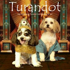 "Moxie & Rosie STAR as ""Turandot"" & ""Liu"""