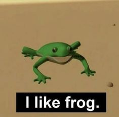 Sapo Frog, Stupid Memes, Funny Memes, Haha, Funny Animals, Cute Animals, Frog Meme, Popee The Performer, Frog Pictures