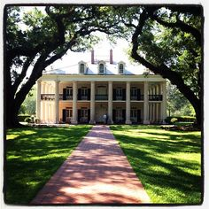 """I do declare..., Oak Alley Plantation, LA"""