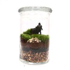 Star Wars Inspired Terrarium // Mini Darth by ForTheLoveOfPop
