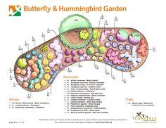 butterfly garden using native plants