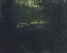 Edward Steichen,  Pastoral - Moonlight, 1907