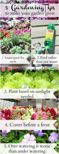 Gardening Tips to Make your Garden Grow