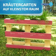 Kräuter in Palette pflanzen: Dieses Kräuterbeet passt auf jeden Balkon Pallet herb bed: Vertical gardening made easy with this guide for a herb garden made of pallets – because the Euro-Pelette is simply our favorite crafting utensil.