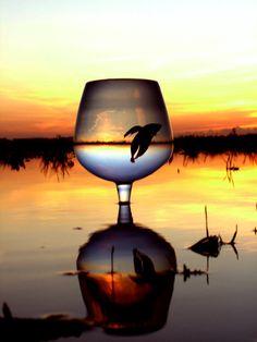 The essential drink by aeon-100.deviantart.com on @deviantART