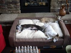 Dogs love curling up on their own low couches, especially when they're propped in front of a warm spot in the living room like a fireplace.
