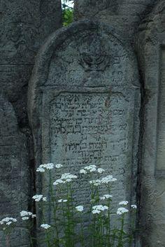 bagafarna-foto: Cmentarz żydowski w Gorlicach (3) * The Jewish cemetery in Gorlice (3)
