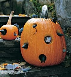 Cool Pumpkin Carving Ideas | 2012