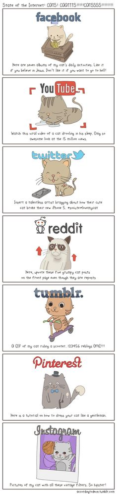 The state of the Internet, explained with cats