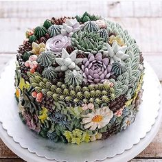 This succulent cake is amazing by @ivenoven . I am sooo inspired! The colours, the textures, the detail  Some people have #relationshipgoals, I have #cakegoals