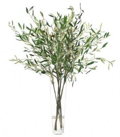 olive branch centerpieces, you could add sprigs of lavender to this and it would be lovely--for JG