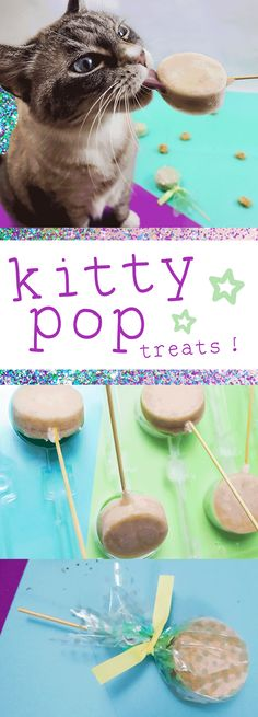 Candy for your Cat: DIY Cat Treats - kiyafries Kitten Treats, Pet Treats, Diy Jouet Pour Chat, Homemade Cat Food, Cat Hacks, Cat Diys, Diy Cat Toys, Kitten Care, Cat Room