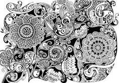 Botanical drawing - Αναζήτηση Google