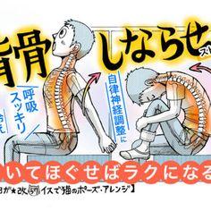 腰痛予防から背中のコリ緩和に「背骨しならせストレッチ...