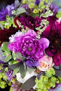 dahlias and herbs - Catkin. Photo by Natural Expressions Photography