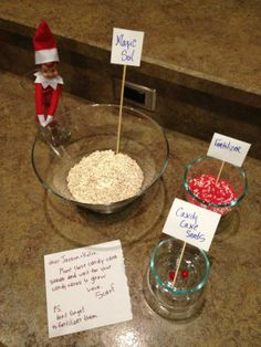 Plant Candy Cane seeds