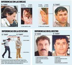 ¿Es el #Chapo #Guzmán el Chapo? #narcotráfico #violencia #Mexico