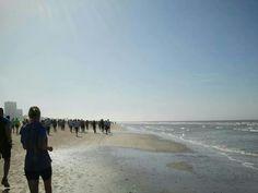 Cirquit zandvoort  run