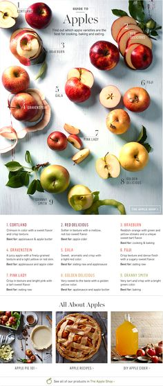 Williams Sonoma: Apple Guide, best varieties for cooking, baking, and eating