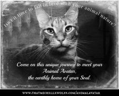 Animal Avatar Journey Starts July 15th!