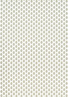 Anna French, Matching Wallpaper, Printing On Fabric, Beige, Green, Pattern, Prints, Fabric Printing, Patterns